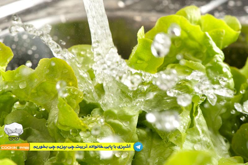 46--cookingpabi--آشپزی-با-پابی---Wash-lettuce-1--شستشوی-کاهو